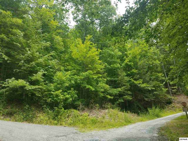 Lot 6 Lumber Jack Way, Sevierville, TN 37876 (#228694) :: Billy Houston Group