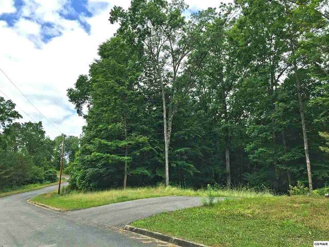 547 Turtle Dove Trail, Dandridge, TN 37725 (#228703) :: Colonial Real Estate
