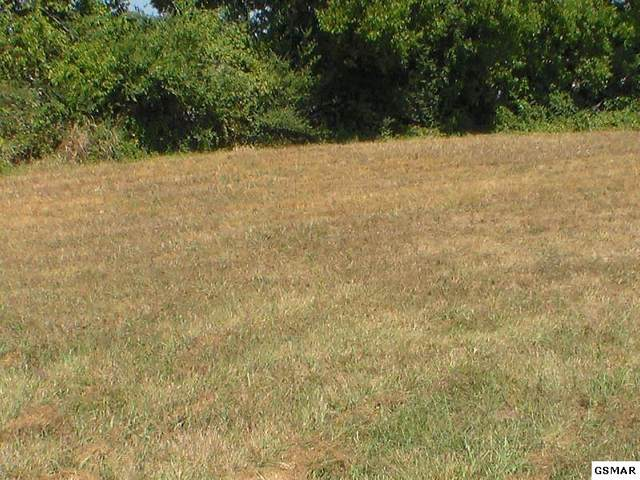 Lot 22 Rippling Waters Circle, Sevierville, TN 37876 (#228722) :: Four Seasons Realty, Inc