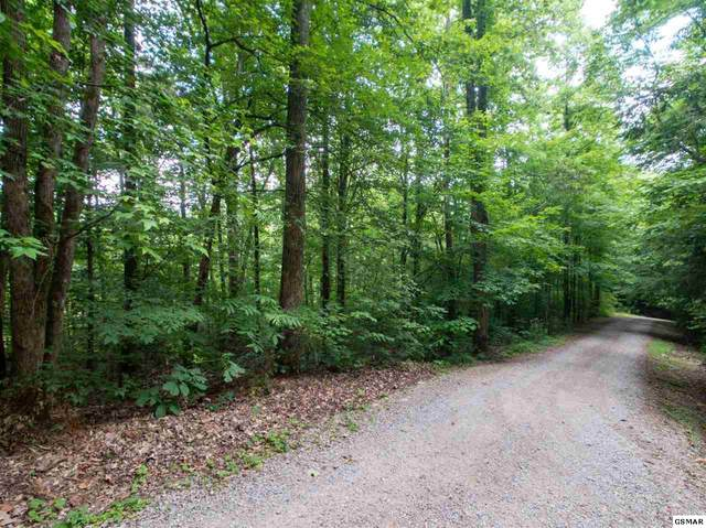 Lot 30 Walden Cove Way, Sevierville, TN 37862 (#228767) :: Four Seasons Realty, Inc