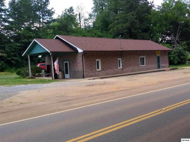 1055 Douglas Dam Road, Kodak, TN 37764 (#228786) :: Billy Houston Group
