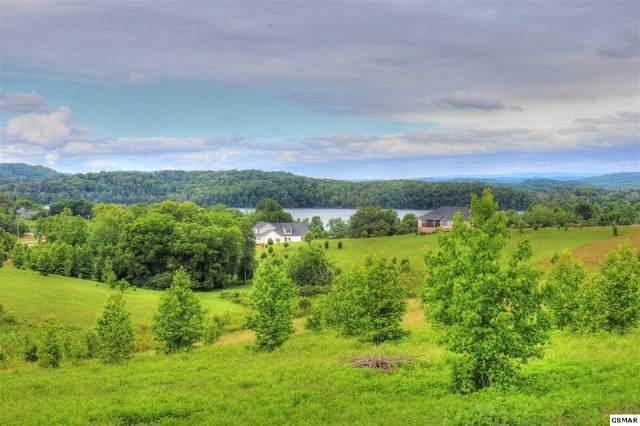 Lot 642 Majestic View, Rockwood, TN 37854 (#228792) :: Four Seasons Realty, Inc