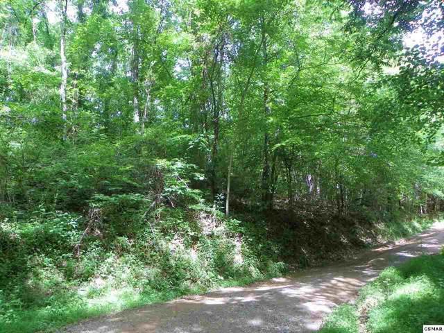 023&023.13 Mountain Scenic Way, Sevierville, TN 37876 (#228807) :: Four Seasons Realty, Inc