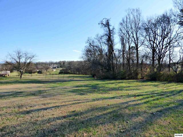 242 Grand Valley Dr Lot 55, Talbott, TN 37877 (#228808) :: Colonial Real Estate