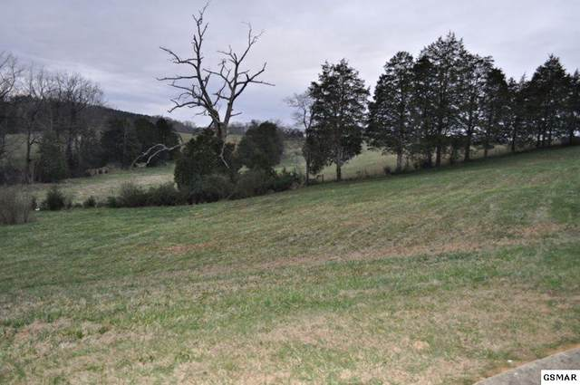 Lot 15 Tradition Lane, Sevierville, TN 38962 (#228823) :: Colonial Real Estate