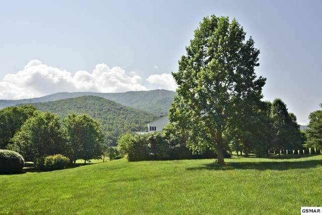 Lot 11 Monhollen Drive, Sevierville, TN 37862 (#228839) :: Suzanne Walls with eXp Realty