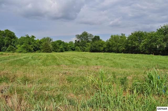 Lot 8 Fox Landing Court, Sevierville, TN 37862 (#228843) :: The Terrell Team