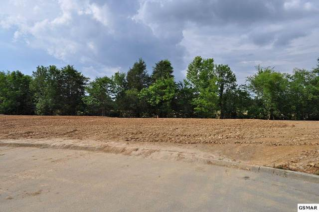 Lot 11 Fox Landing Court, Sevierville, TN 37862 (#228845) :: Billy Houston Group
