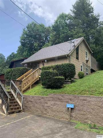 660 Morning Mist Way, Gatlinburg, TN 37738 (#228851) :: Colonial Real Estate