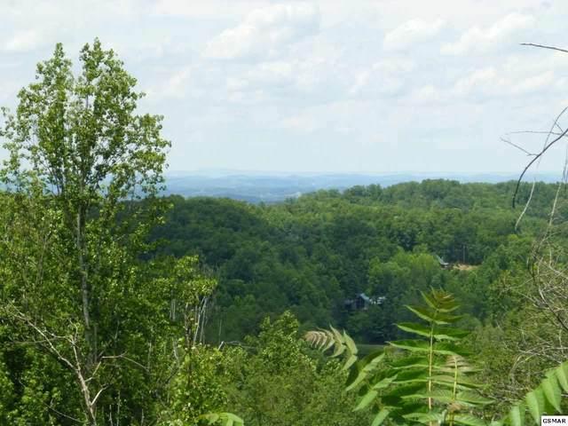354 Cove Mountain Rd. Parcels 046.00,, Gatlinburg, TN 37738 (#228878) :: Four Seasons Realty, Inc