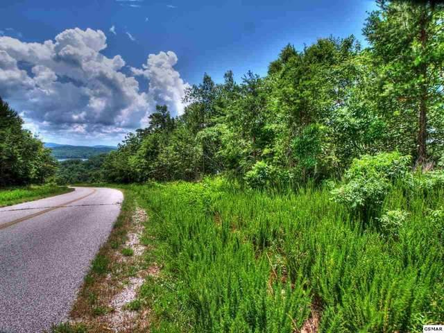 Lot 418 Flint Ridge Rd, Rockwood, TN 37854 (#228909) :: Four Seasons Realty, Inc