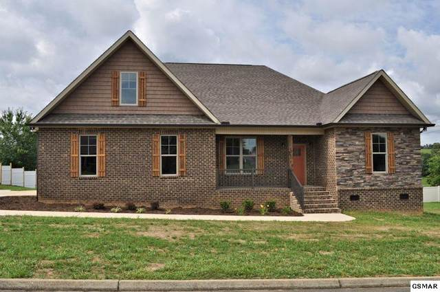 1406 Instrumental Avenue, Sevierville, TN 37876 (#228918) :: Four Seasons Realty, Inc