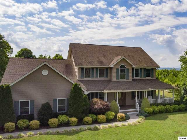 1044 Horizon Dr, White Pine, TN 37890 (#228926) :: Colonial Real Estate