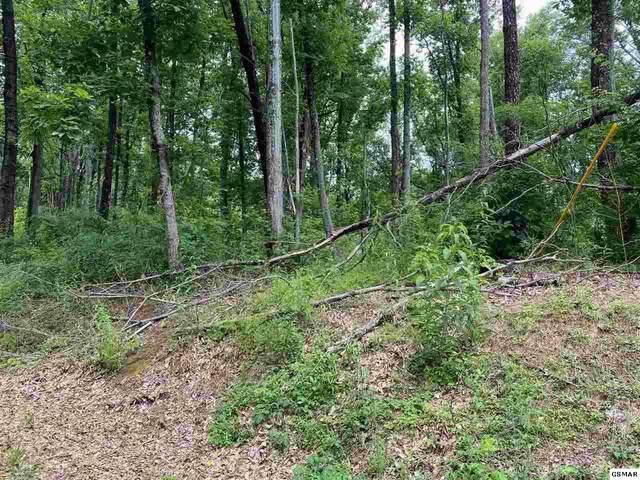 Lot 26 Deer Path Ln, Gatlinburg, TN 37738 (#228941) :: Four Seasons Realty, Inc