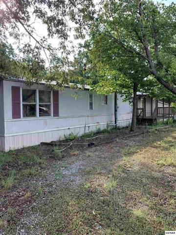 1736 Omaha Trl, Dandridge, TN 37725 (#228952) :: Four Seasons Realty, Inc