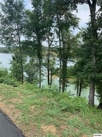 Lot 49 Rocky Point Way Timberlake Bay, Sevierville, TN 37876 (#228954) :: Jason White Team | Century 21 Four Seasons