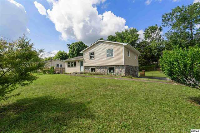 4112 Crestfield Rd, Knoxville, TN 37921 (#228962) :: Colonial Real Estate