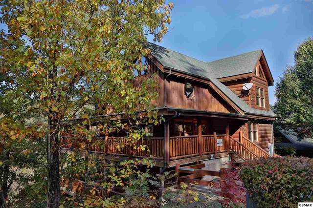 2054 Bear Haven Way Blessed Nest, Sevierville, TN 37862 (#228968) :: The Terrell Team