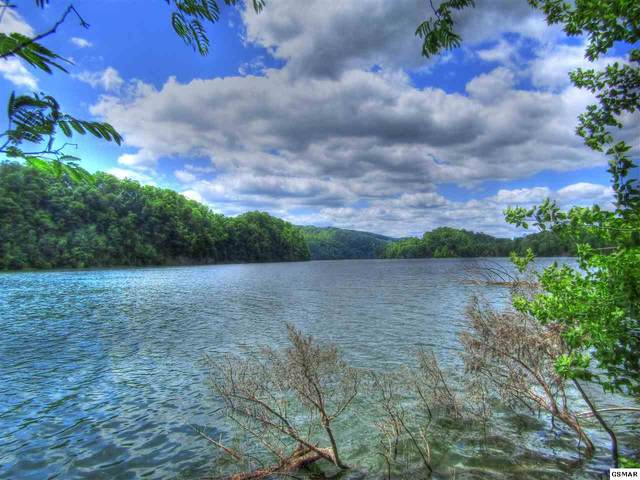 Lot 53 Mountain Shores Rd, New Tazewell, TN 37825 (#228986) :: Four Seasons Realty, Inc