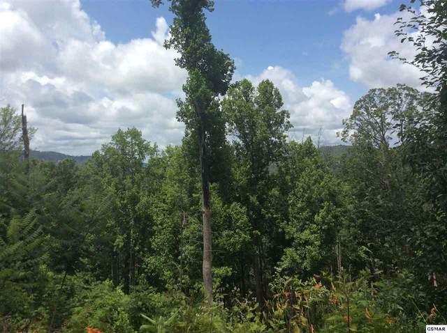 516 Forest Springs Dr Lot 1, Gatlinburg, TN 37738 (#228994) :: Billy Houston Group