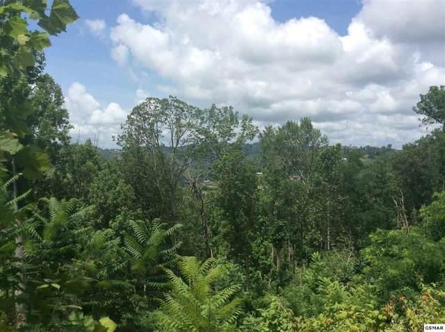 520 Forest Springs Dr Lot 2, Gatlinburg, TN 37738 (#228996) :: Billy Houston Group