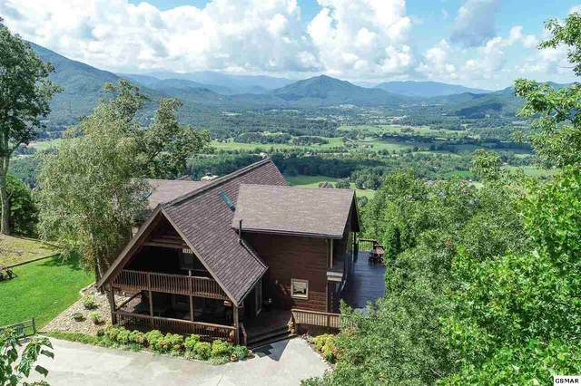 2517 Which A Way, Sevierville, TN 37862 (#228999) :: Four Seasons Realty, Inc