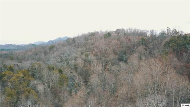 331 Chestnut Ridge Rd., Walland, TN 37886 (#229004) :: Four Seasons Realty, Inc