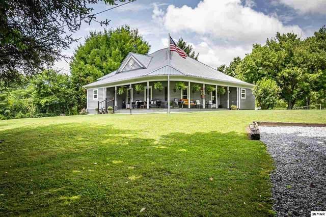 2095 Sockless Road, Dandridge, TN 37725 (#229019) :: Four Seasons Realty, Inc