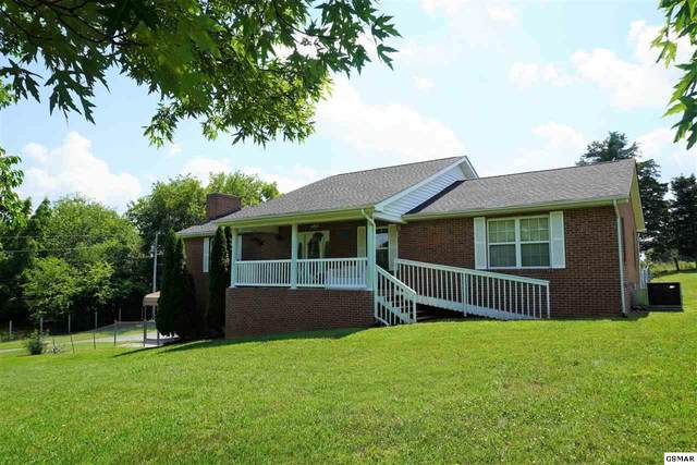 1891 Dairy Farm Rd, New Market, TN 37820 (#229024) :: Colonial Real Estate
