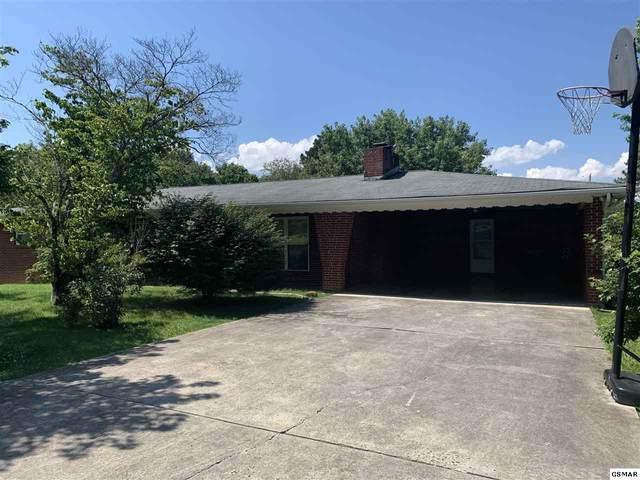 611 Hardin Ln, Sevierville, TN 37862 (#229034) :: The Terrell Team