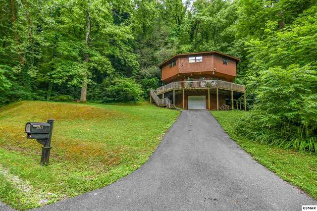 3945 Horsepen Rd, Cosby, TN 37722 (#229037) :: Four Seasons Realty, Inc