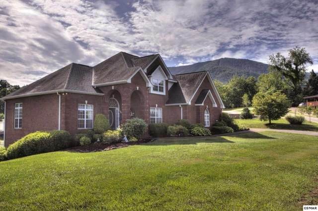 3436 Cove Meadows Dr, Sevierville, TN 37862 (#229042) :: Four Seasons Realty, Inc