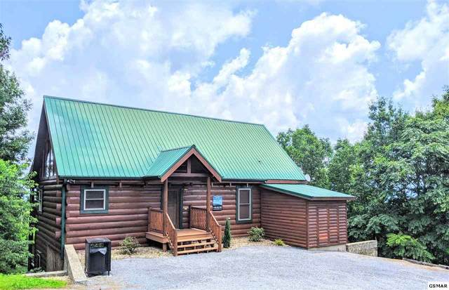 3221 Engle Town Rd, Sevierville, TN 37862 (#229058) :: Billy Houston Group