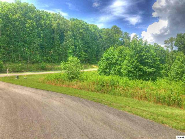 Lot 369 Thief Neck View Dr, Rockwood, TN 37854 (#229059) :: Jason White Team | Century 21 Four Seasons