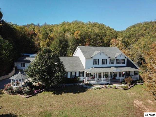 1650 Little Cove Rd, Sevierville, TN 37862 (#229068) :: Four Seasons Realty, Inc