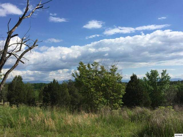 2935 Buck Horn Road, Sevierville, TN  (#229069) :: Four Seasons Realty, Inc