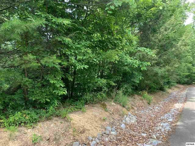 LOT 91 Bird View Lane, Sevierville, TN 37862 (#229072) :: Jason White Team | Century 21 Four Seasons
