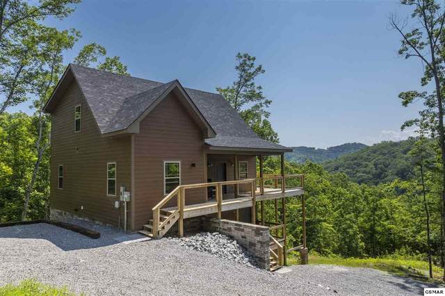2005 Mindy Jo Way, Sevierville, TN 37862 (#229078) :: Billy Houston Group