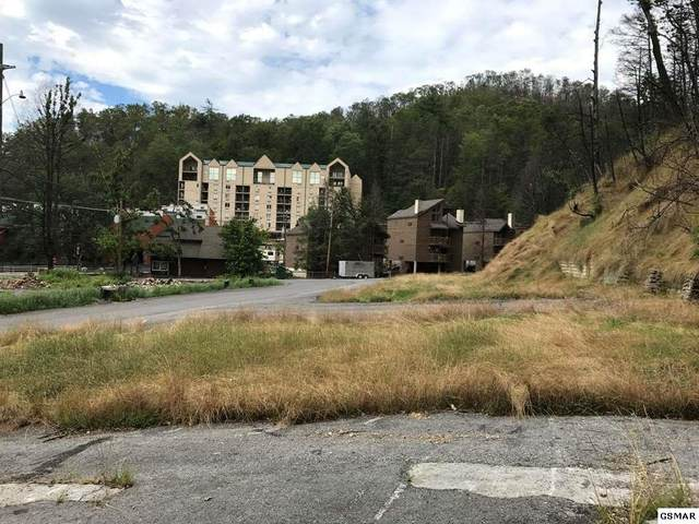 215 Circle Drive, Gatlinburg, TN 37725 (#229086) :: Tennessee Elite Realty