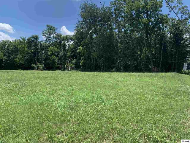 804 Harrison Ferry Rd, Baneberry, TN 37890 (#229093) :: Colonial Real Estate