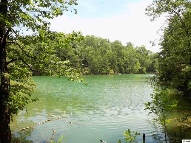 Parcel 016.00 Scott St, Sevierville, TN 37876 (#229099) :: Colonial Real Estate