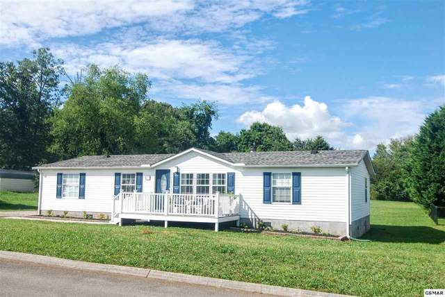 241 Westmoreland Ct, Seymour, TN 37865 (#229106) :: Colonial Real Estate
