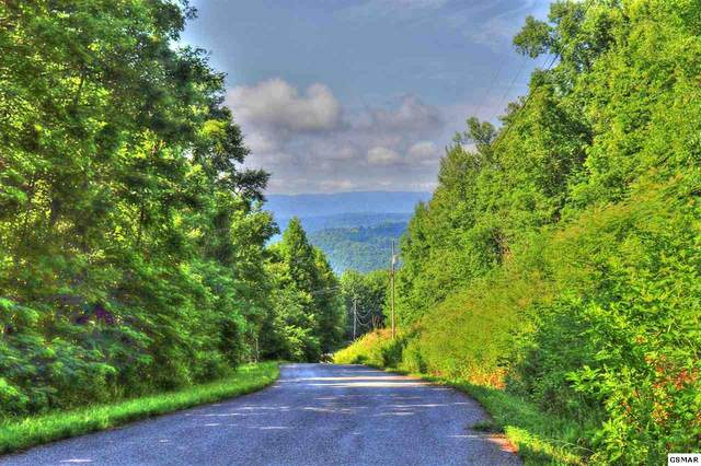 Lot 214 Clinch View, New Tazewell, TN 37825 (#229127) :: The Terrell Team