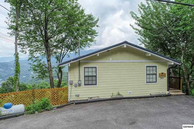 "2050 Luzerne Drive ""Billion Dollar, Gatlinburg, TN 37738 (#229128) :: Four Seasons Realty, Inc"