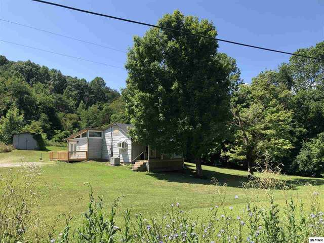 1635 Sandy Ridge Road, Dandridge, TN 37725 (#229134) :: Colonial Real Estate