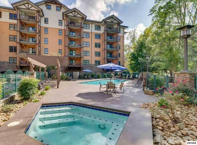 215 Woliss Ln Unit 504 Pool/C, Gatlinburg, TN 37738 (#229135) :: Billy Houston Group