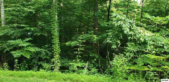 Lot 1458 Beach Front Dr Lot 1458, Sevierville, TN  (#229157) :: Tennessee Elite Realty