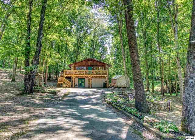 1139 Smokyview Dr, Sevierville, TN 37862 (#229163) :: Colonial Real Estate