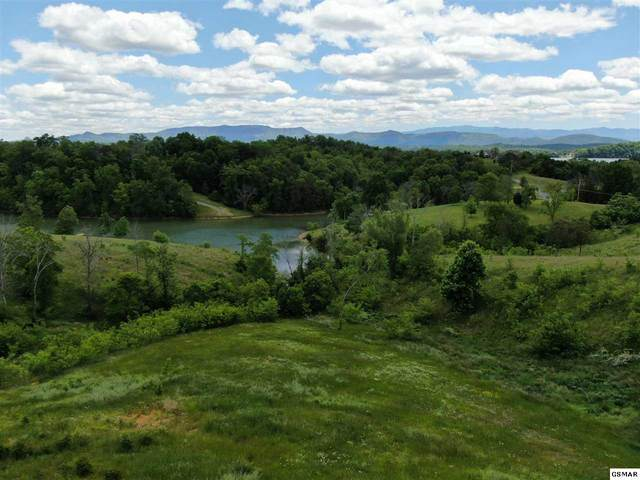 Lot 25 Mountain Lake Drive, Dandridge, TN 37725 (#229180) :: Four Seasons Realty, Inc