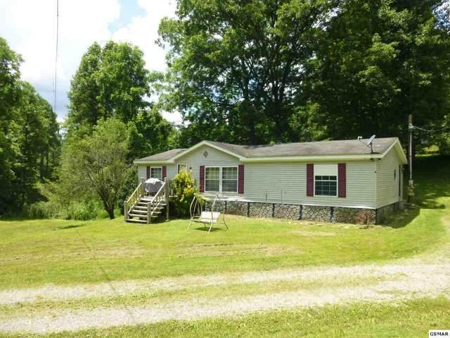 135 Branam Hollow Ln., Gatlinburg, TN 37738 (#229186) :: The Terrell Team